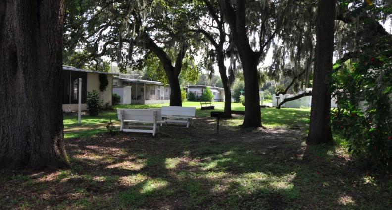 Sixth Avenue Mobile Homes In Zephyrhills FL